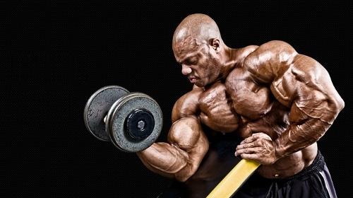Mass building Supplements From MuscleTech