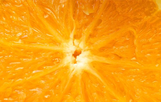 Citrus time!