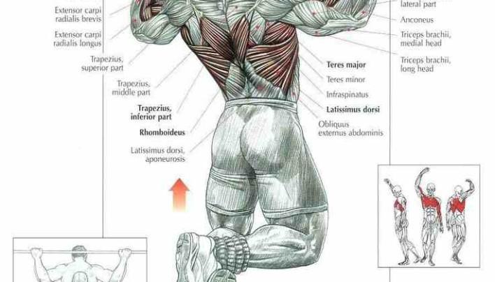 Chin ups Workout!