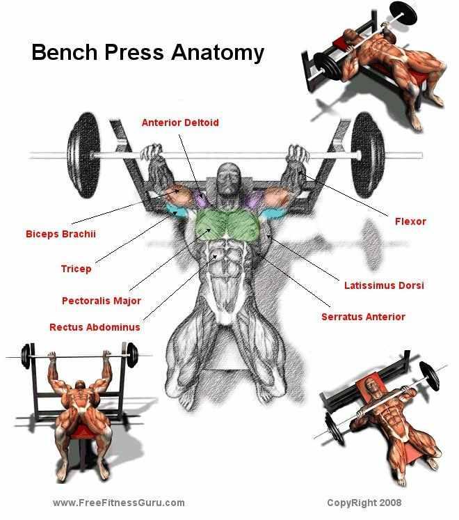 Bench press Workout!