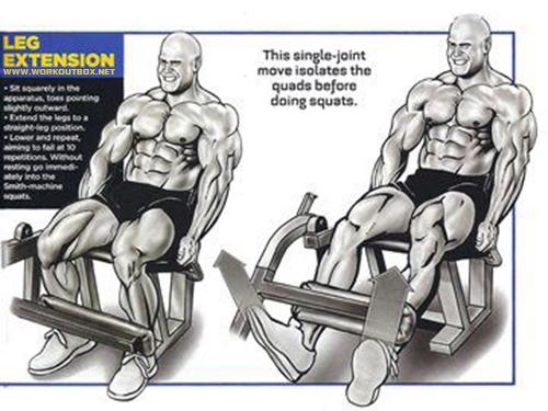 Leg Extension Workout!