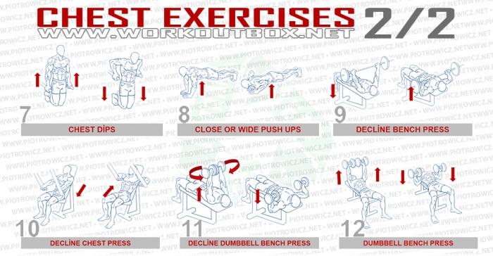 Chest Exercises Part 2