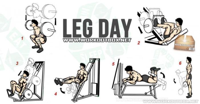 Leg workout!