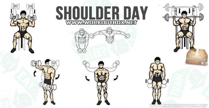 Shoulder Day Workout!