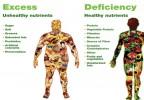 Unhealthy Vs Healthy Nutrients