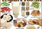 Excellent sources of Vegan Protein!