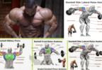8 Best Shoulder Muscle Exercises