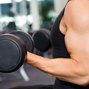 http://www.musclespro.com/wp-content/uploads/image-import/_5o9IdYjLECY/Sw0Ly3RAjrI/AAAAAAAABvs/kKZPG6GSRgs/s320/biceps_965771.jpg